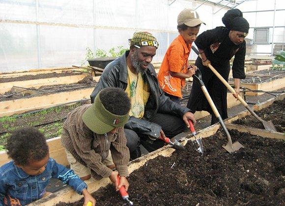 Grow your own vegetables through Massachusetts's Food Project's Build-a-Garden program.