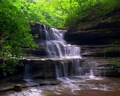 Heritage Corridor Convention and Visitors Bureau (CVB) on Thursday entered Starved Rock State Park into VirtualTourist.com's quest to crown the ...