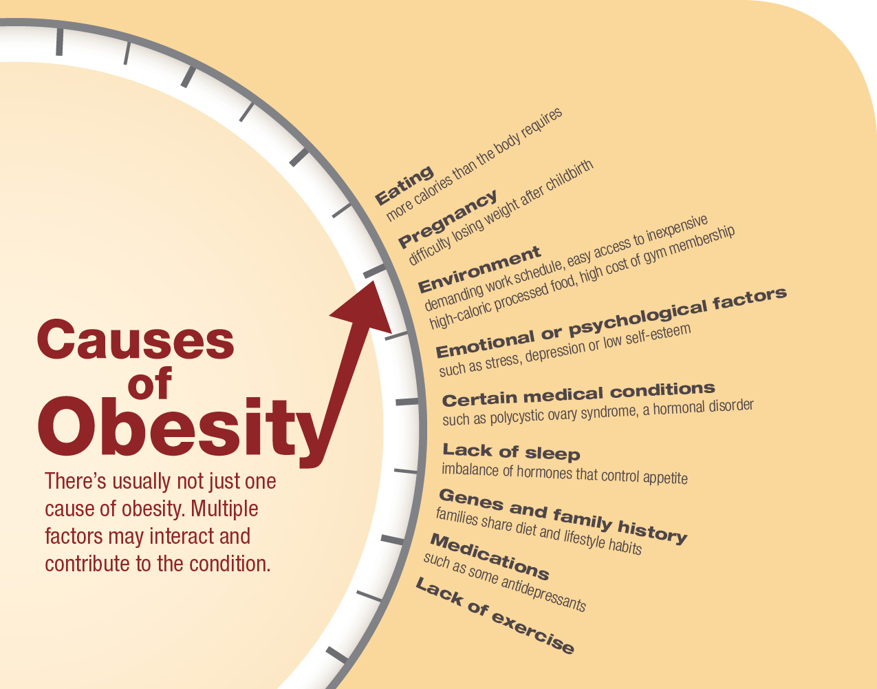 What's Behind the Obesity Epidemic