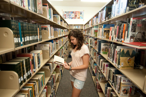 essay on importance of library in school