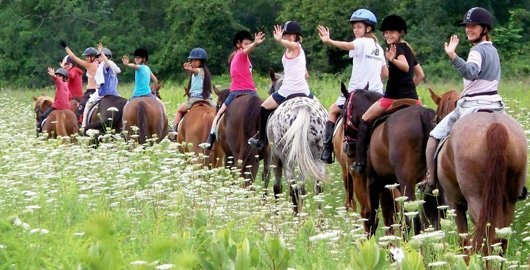Equestrian Camps Begin The Times Weekly Community