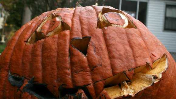 Will County's second-annual Jack-0-Lantern collection will be held from 9 a.m. to noon Nov. 6 and 7 at Lewis University ...