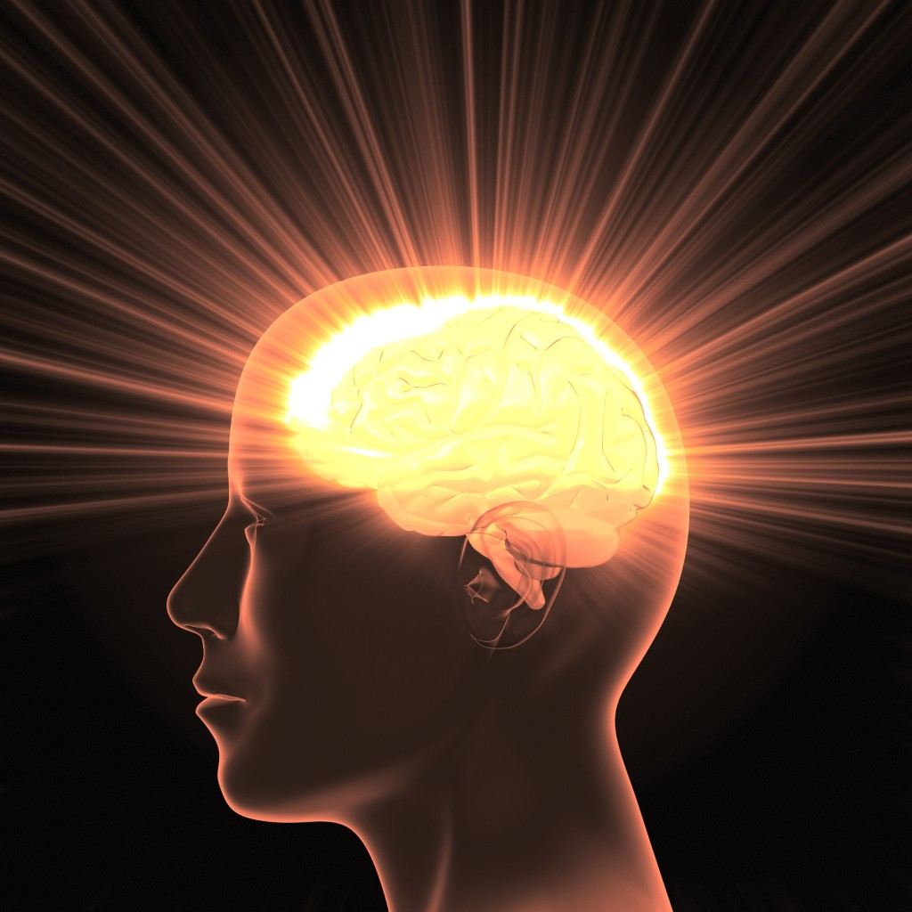 a discussion on the power of the human brain Free human brain papers, essays, and a portrait of the brain through theories and discussion a hemispherectomy is a monster power [tags: power, human.