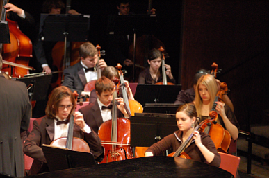 The Metropolitan Youth Symphony Orchestra will perform two concerts in March. The first performance is free and begins at 7:30 ...
