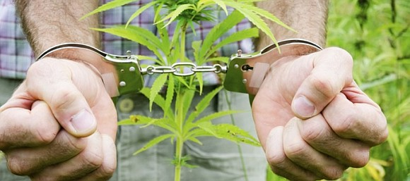 Congressman Bill Foster (D-IL) reintroduced legislation to change penalties students face when convicted of minor marijuana offenses. The Second Chance ...