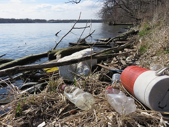 Whether it's picking trash out of the water or removing invasive species from a preserve, the Forest Preserve District of ...