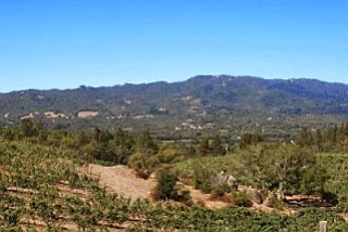 RUSSIAN RIVER VALLEY, Sonoma County, CA--The Russian River Valley is one of the unique growing regions of Northern California. With ...