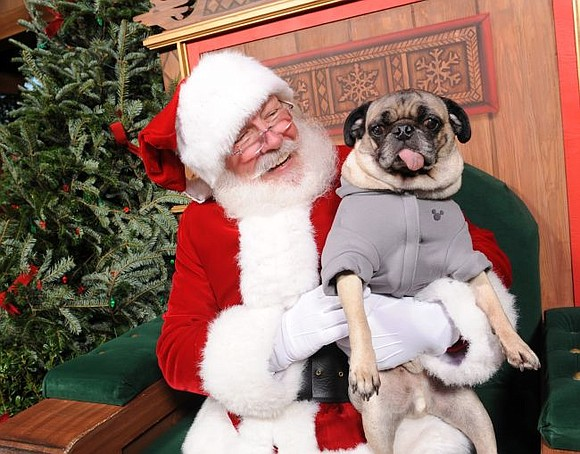 Sunday, December 8 Time: 11:00a - 2:00pm. Bring your friendly pets to Pilcher Park Nature Center to get their photos ...