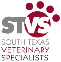 Veterinarians from South Texas Veterinary Specialists are treating a cat here after he was allegedly shot with an arrow by ...