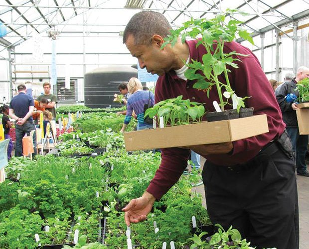 A Dudley neighborhood resident purchases seedlings for his garden.