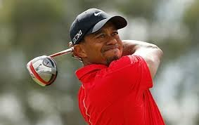 Tiger Woods would win the 2013 British Open.
