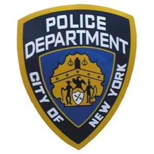 Since Mayor De Blasio took office the NYPD has arrested an average 80 people per month, 86 percent of those ...