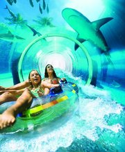 Aquaventure was expanded in 2013 to include a Leap of Faith ride that passes through a shark-filled aquarium. Visitors can swim in a manmade lagoon filled with marine animals.