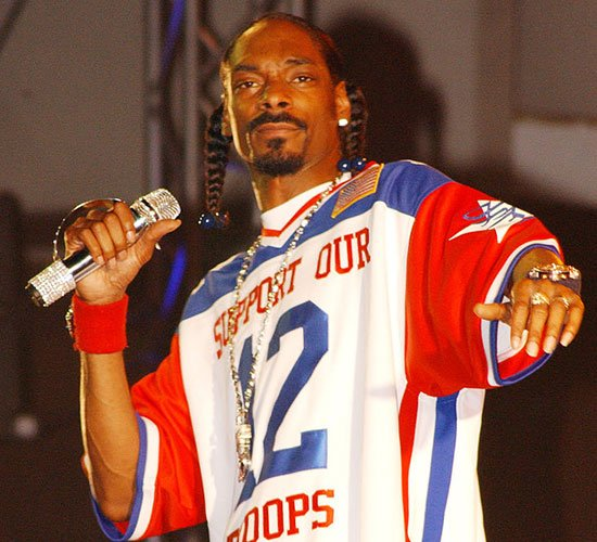 Highly successful hip-hop artist Snoop Dogg has a wide and varied career, including renaming himself Snoop Lion for a reggae album, acting in upcoming movie Turbo and performing to support U.S. military forces (above).