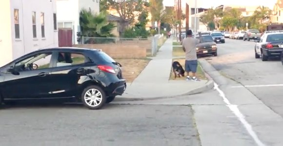 HAWTHORNE, Calif. — The owner of a Rottweiler that was fatally shot by Hawthorne police, prompting protests and threats against ...