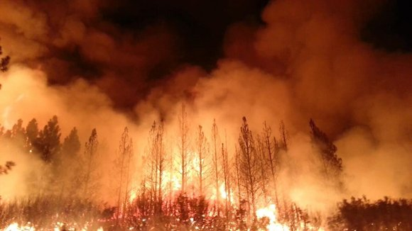 The Rim fire burns in inaccessible and steep terrain, hampering firefighting efforts on Friday, August 23, 2013.