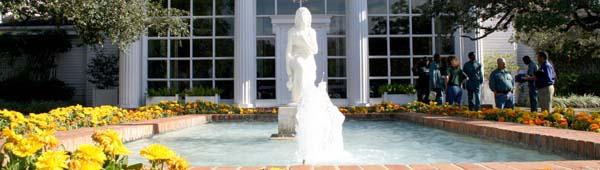Houston Garden Center Nrysinfo