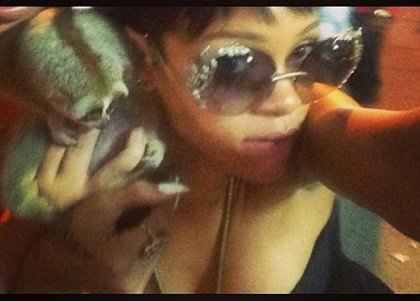 Rihanna to the rescue! This Instagram photo helped return two endangered primates to the wild.