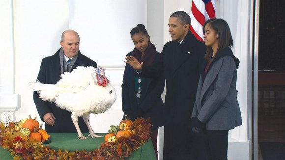 President Barack Obama pardoned Popcorn the turkey ahead of Thanksgiving.
