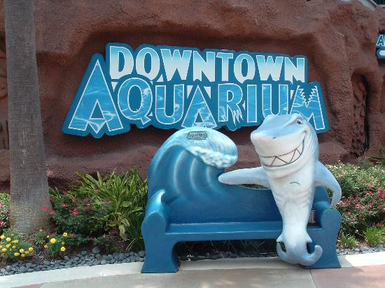 Downtown Aquarium Announces New Ride To Debut On December