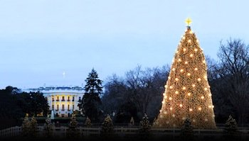 On Friday, Dec. 6, the National Christmas Tree Lighting ceremony will take place on the Ellipse at approximately 4:30 p.m.
