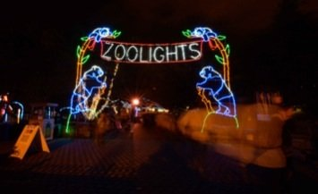 Thousands turned out for the annual ZooLights festivities on Dec. 21, 2013. The light show attracts more than 100,000 visitors to the National Zoo each year.