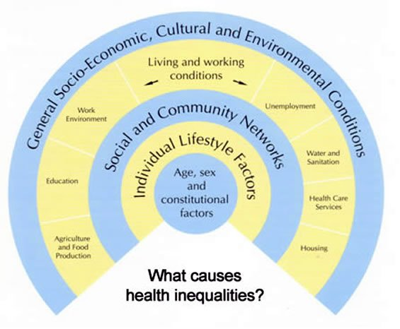 sociological and biological constructs of health A level sociology revision – education  children are dependent on adults for a range of biological and emotional needs the social construction of childhood.