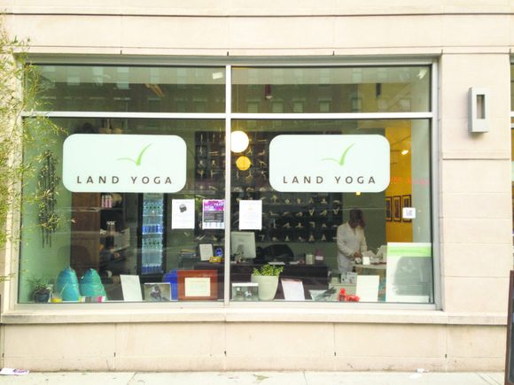 Land Skin Care and Land Yoga, located at 2116 Frederick Douglas Blvd. between 114th and W. 115th streets, are two ...