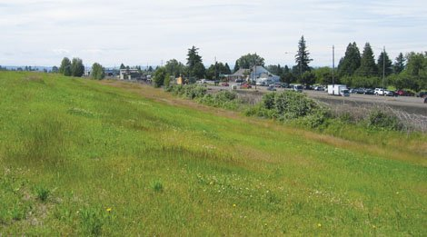 The future site of Thomas Cully Park in northeast Portland looking north toward Columbia Boulevard.