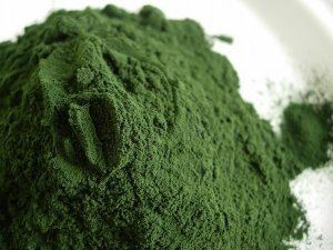 The health benefits of spirulina are so numerous for the body that it should become a staple in everyone's diet ...