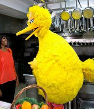 "First Lady Michelle Obama participates in a ""Let's Move!"" and ""Sesame Street"" public service announcement taping with Big Bird in the White House Kitchen, Feb. 13, 2013"