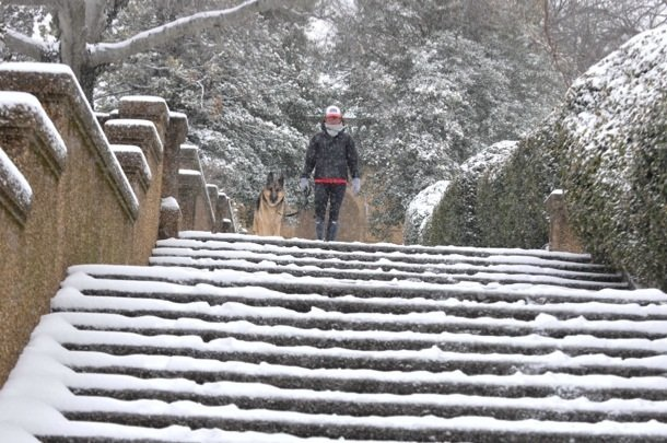 A man stands with his dog at the to of the steps of Meridian Hill Park in Northwest on Monday, March 3, after a massive snowstorm hit the region.