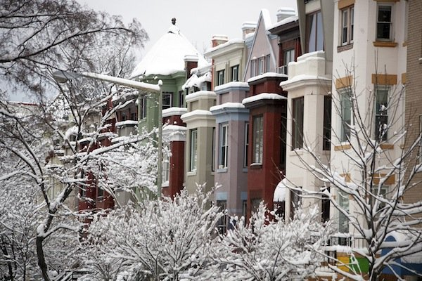 Snow covers the trees in front of row houses on Ontario Road in Northwest D.C., on March 17, 2014, after a winter storm hit the region.