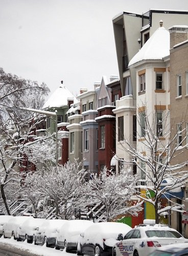 Snow-covered trees and cars line the street in front of row houses on Ontario Road in Northwest D.C. on March 17, 2014, after a winter storm hit the region.