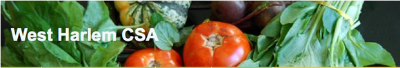 Three CSA sites located in the Bronx, Central Brooklyn and West Harlem will be featured by the New York City ...