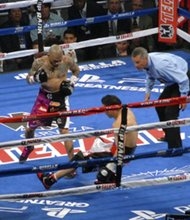 Miguel Cotto hammered Sergio Martinez throughout the fight.
