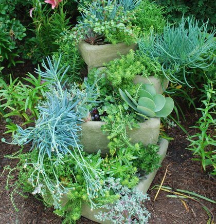 Create a backyard escape with the help of container gardens. Whether you're looking for a visit to the desert, an ...