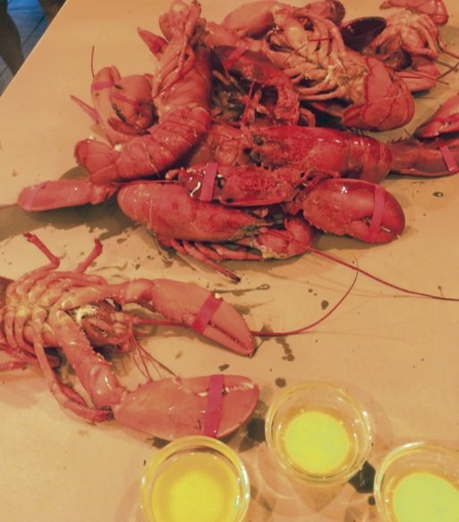 Lobster and a Butter dip
