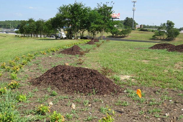 Weeds are thriving at the Turner Hill Road/I-20 ramp while mounds of mulch add to the unkempt look. The landscaping project is part of the county's $1.02 million  gateway beautification  initiative.