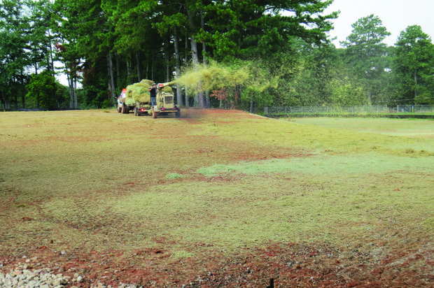 Crews seed the campus of Tilson Elementary, which also was demolished.
