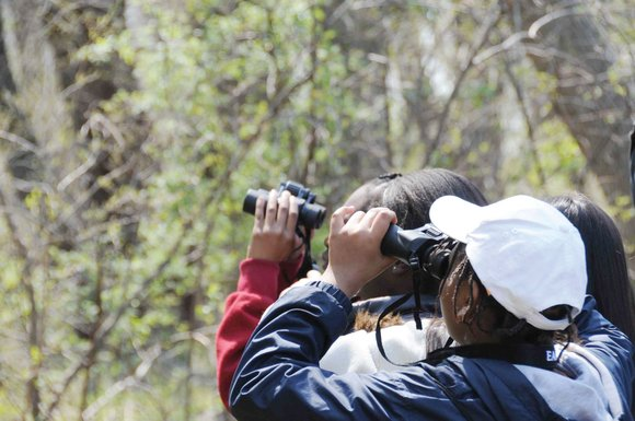 Children and adults can commune with a few fine-feathered friends at the Atlanta Audubon Society Bird Walk on Aug. 30 ...