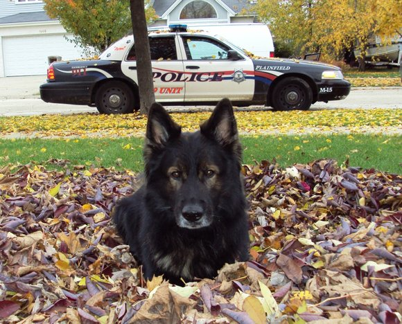 The dog had worked with Officer Brian Wagner since 2006.