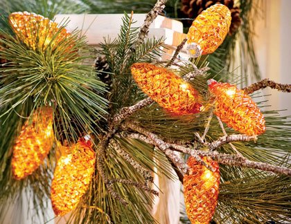 Liven up your holiday décor with lights, a bit of glitz and some colorful blossoms this season.