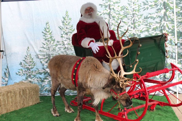 bridgemere meet santa and reindeer