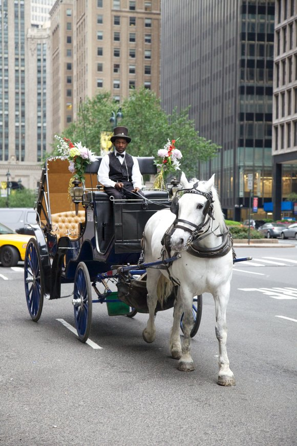 Of all the hills for a New York City politician to possibly die on, one would think horse carriages in ...