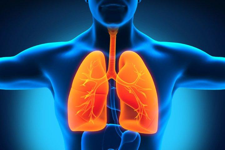 Resultado de imagen para salud respiratoria vino