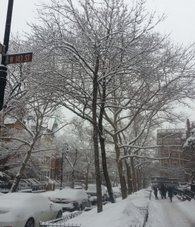 Snow day in Harlem