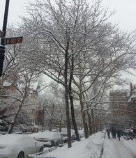 Snow day in Harlem