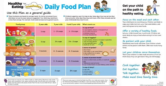 Sample Of A Canada Food Guide Daily Diet