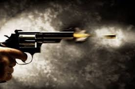 Two Chicago men reportedly started firing guns during a dice game being played in the basement of a home in ...